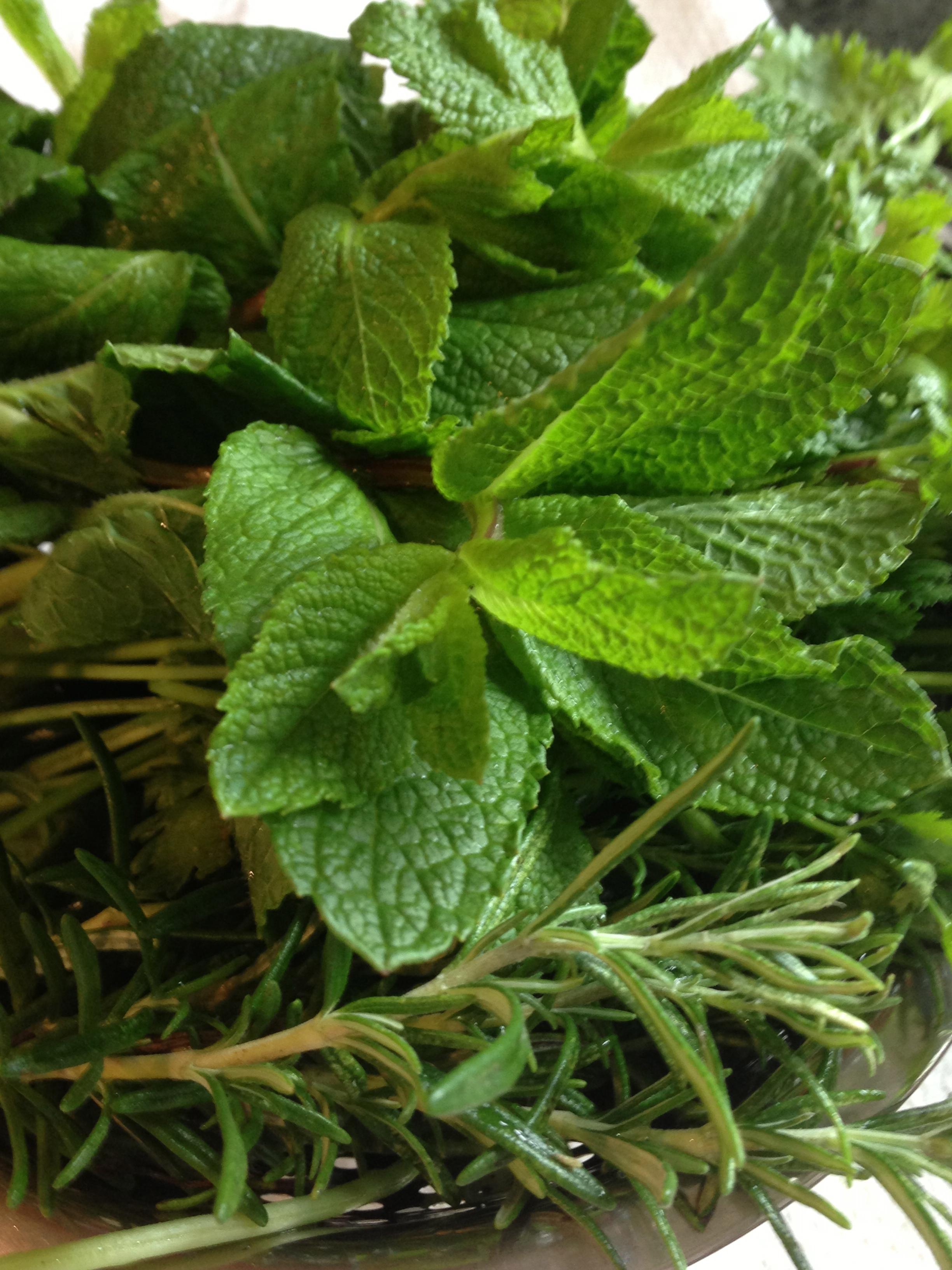 bouquet d'herbes aromatiques
