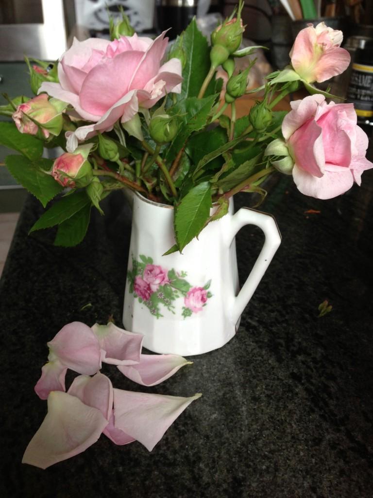 Roses anciennes du jardin