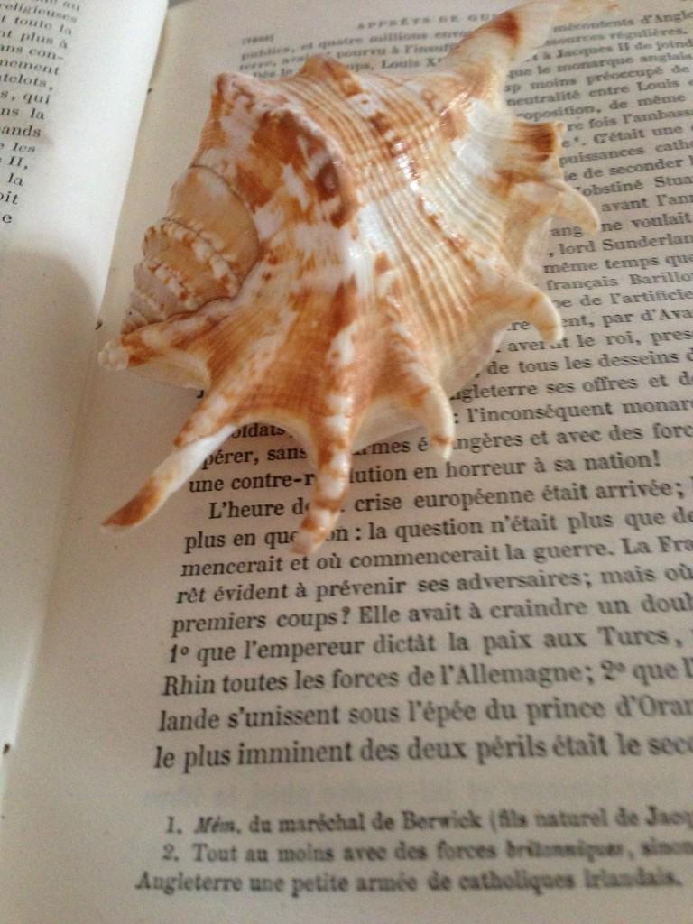 lecture de bord de mer