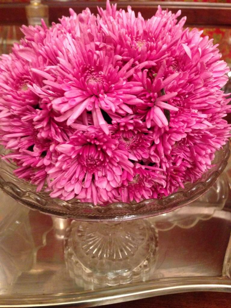 boule de chrysanthème