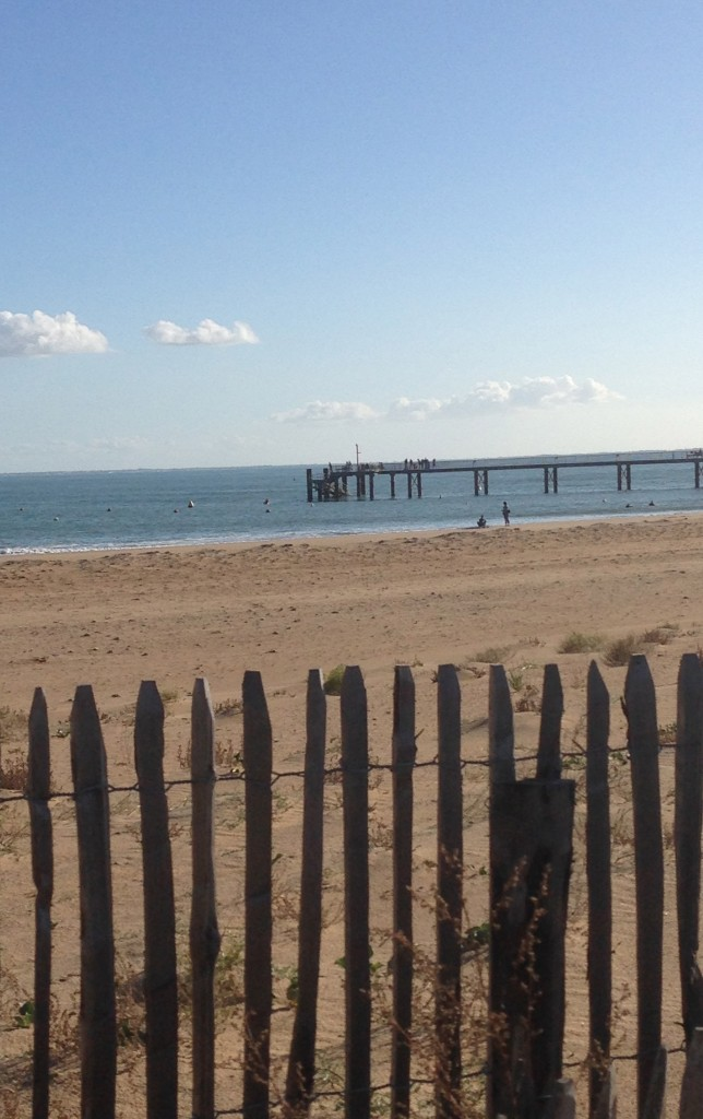 plage d'automne
