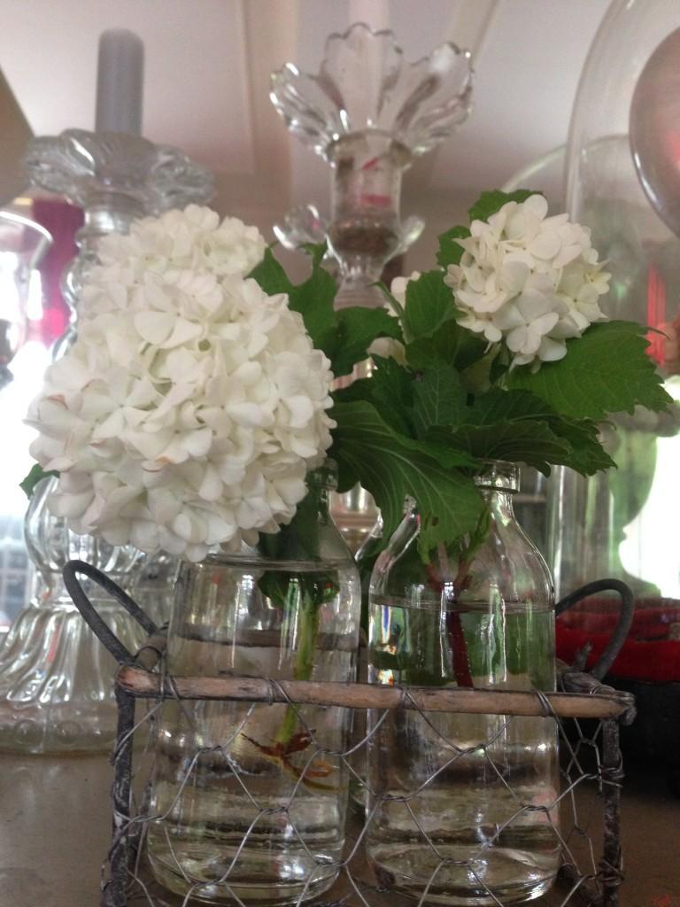 boules de neige , fleurs