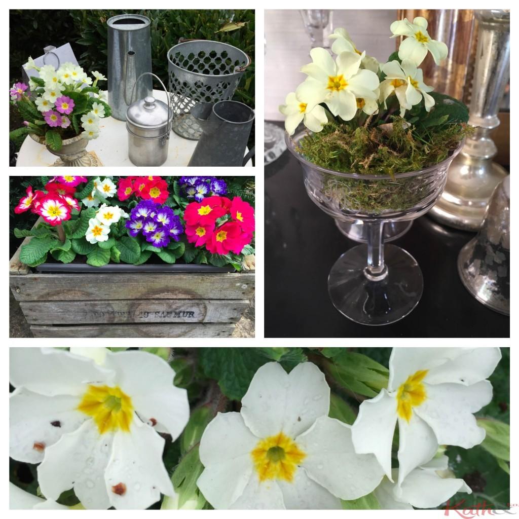hommage au printemps