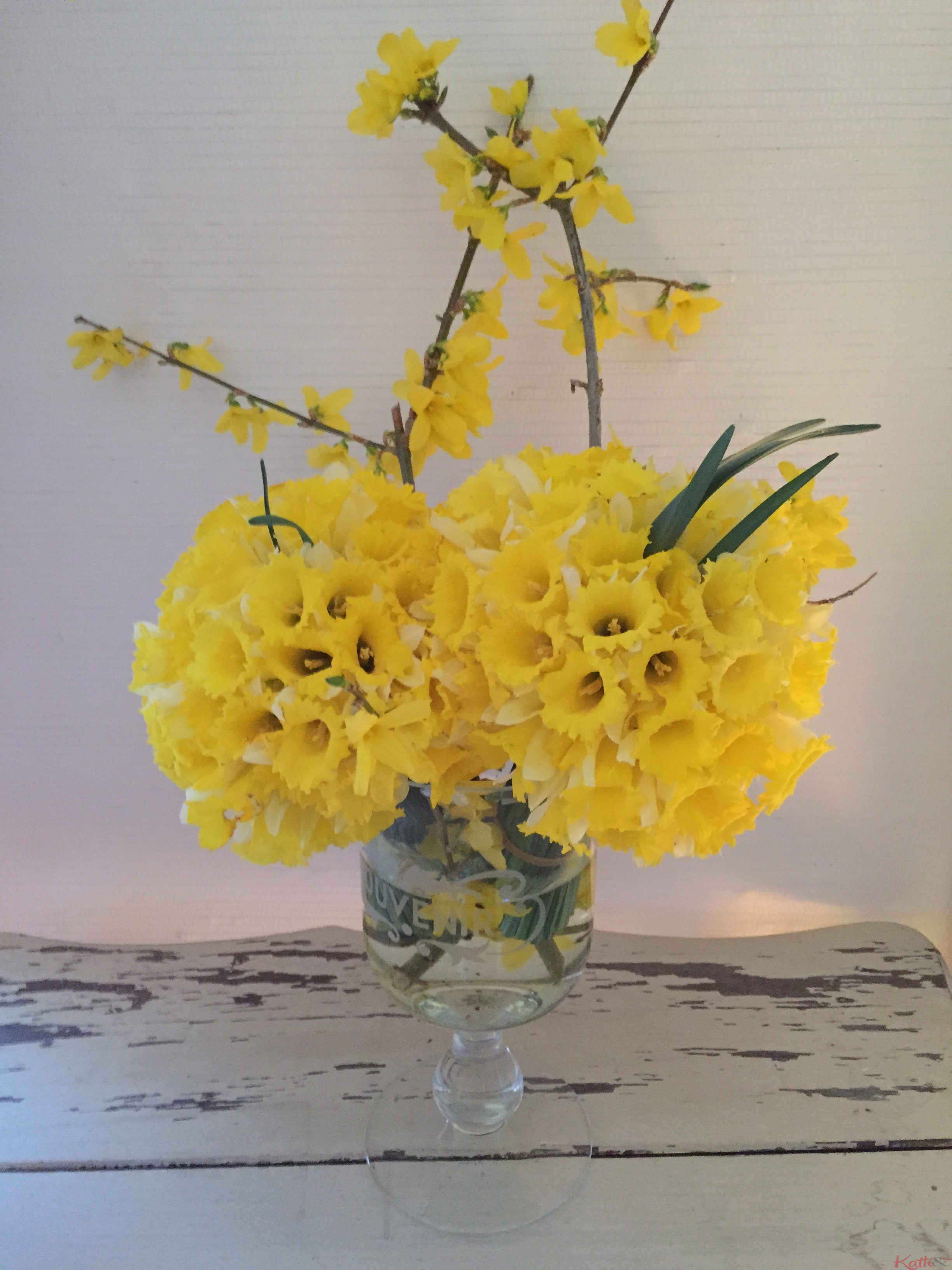 jonquilles, forsythias, fleurs de printemps