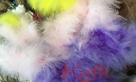 plumes de Pâques