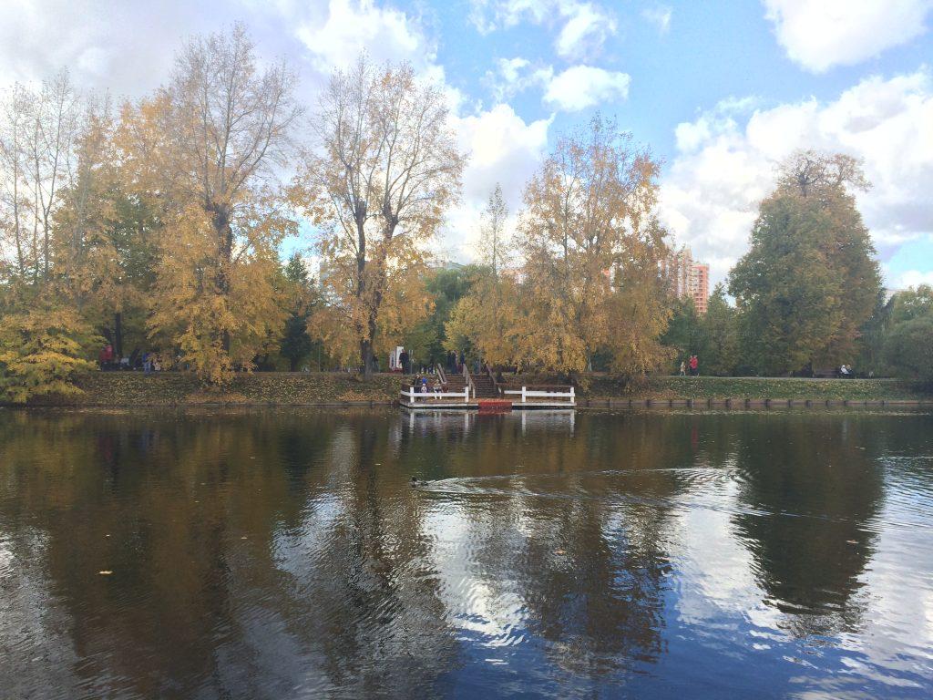 parc Vorontsov