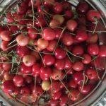 coupe de cerises